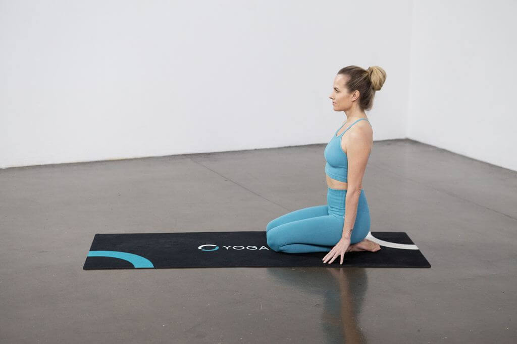Dolphin Pose (Ardha Pinch Mayurasana) - Yoga Pose