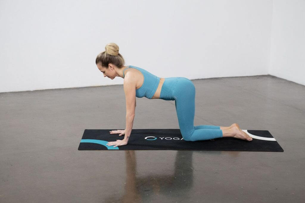 Downward Facing Dog (Adho Mukha Svanasana) - Yoga Pose