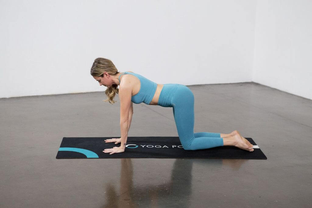 Dolphin Plank Pose (Makara Adho Mukha) - Yoga Pose