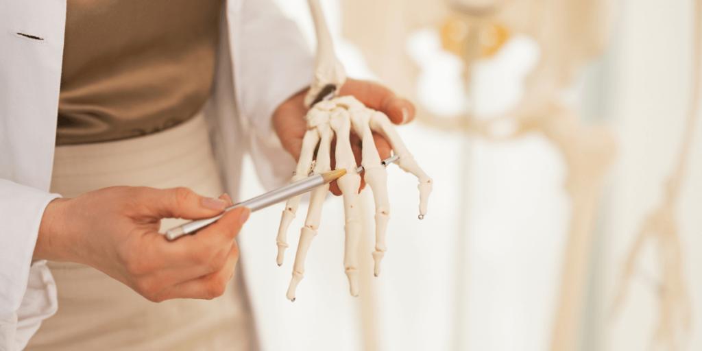 bones are important